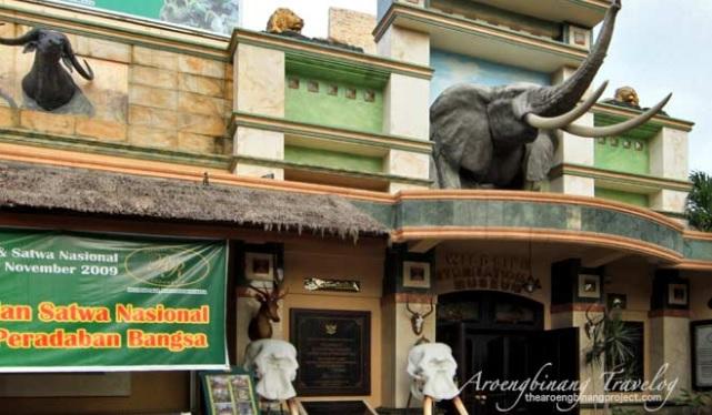 gambar-rahmat-international-wildlife-museum-gallery